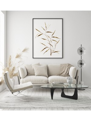 Dried plants poster no 8