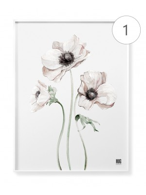 """Subtle anemones"" poster set"