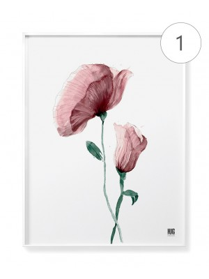 """Botanic duet"" poster set"