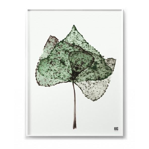 Plakat Liść zielony