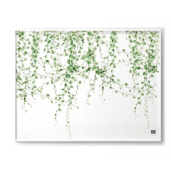 Ivy poster horizontal
