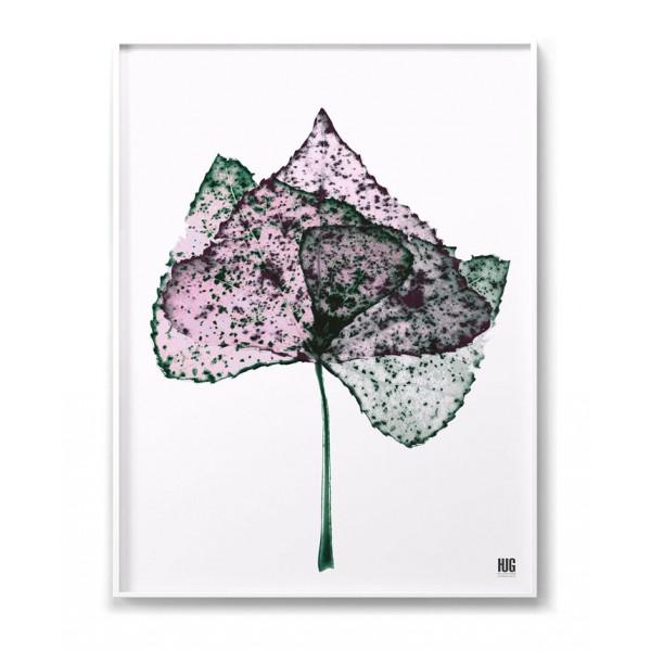 Plakat Liść różowy