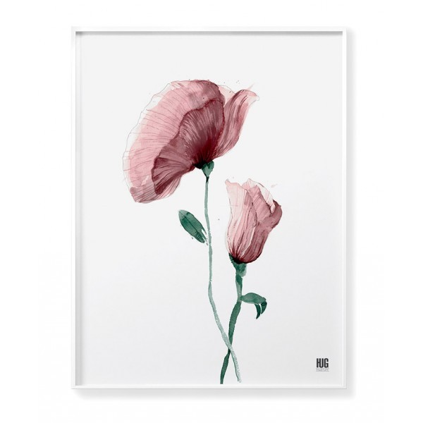 Pink poppy poster no 3