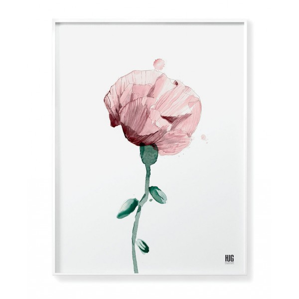 Pink poppy poster no 2