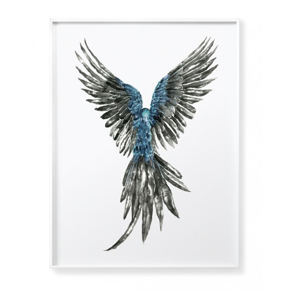 Parrot 2 Poster