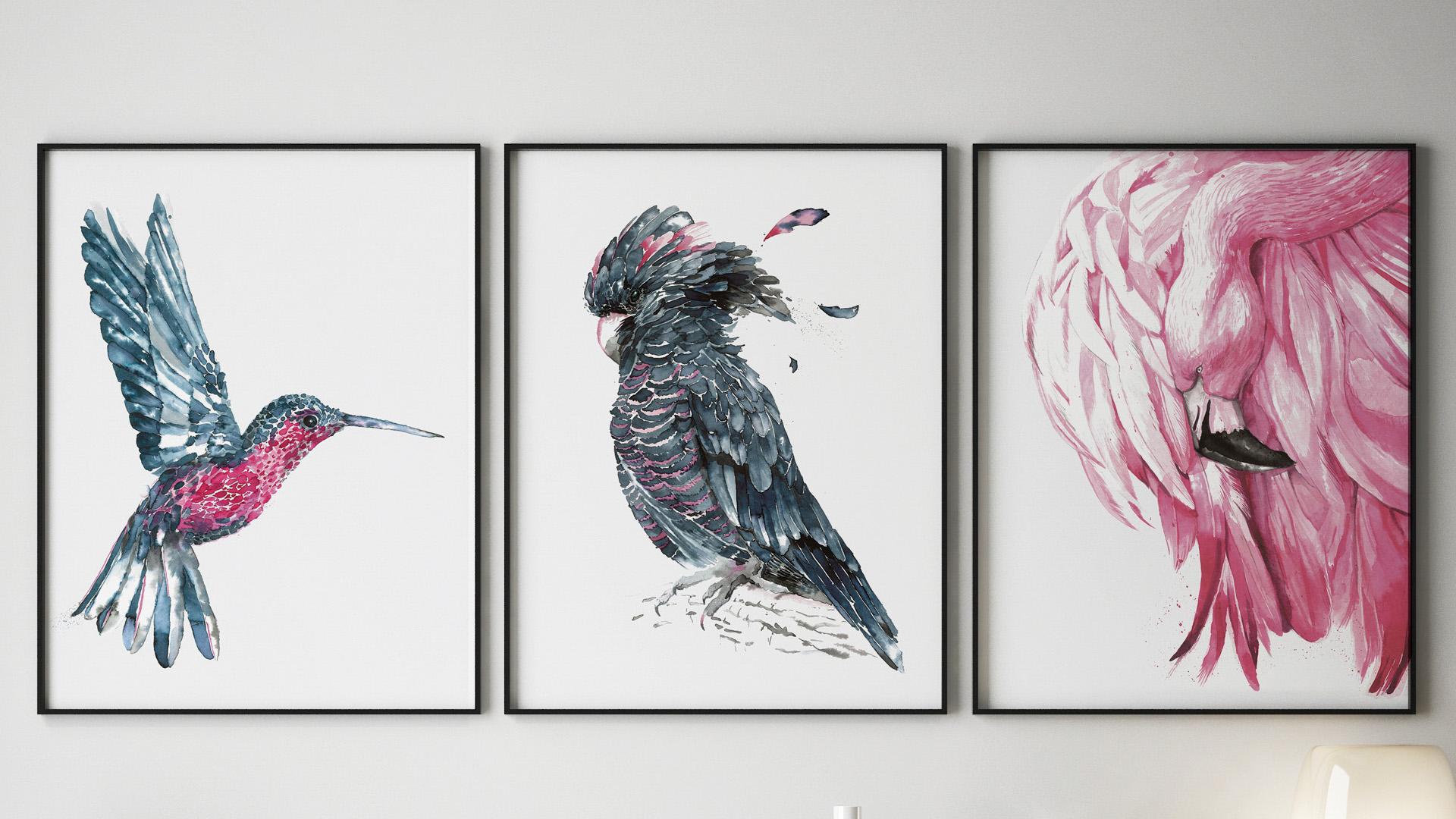 slajder-ptaki